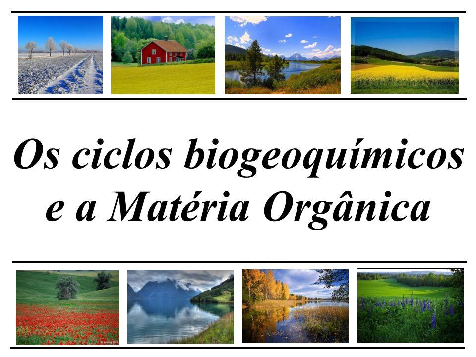 Os ciclos biogeoquímicos e a Matéria Orgânica