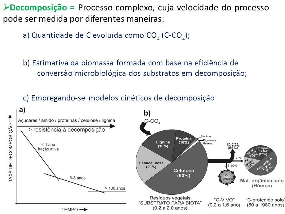 Decomposição = Processo complexo, cuja velocidade do processo pode ser medida por diferentes maneiras: