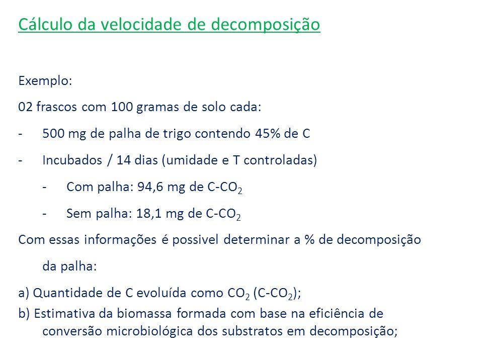 Cálculo da velocidade de decomposição
