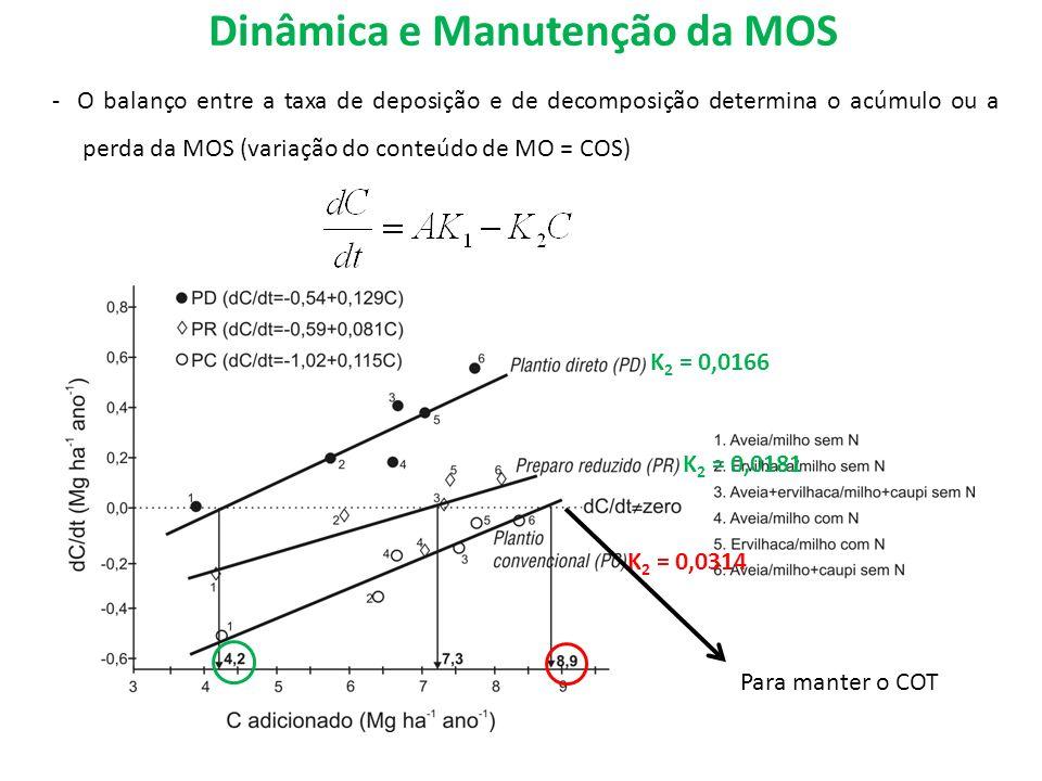 Dinâmica e Manutenção da MOS