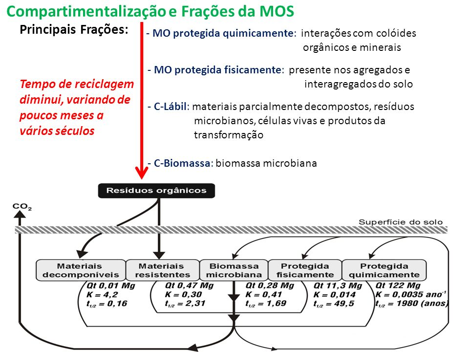 Compartimentalização e Frações da MOS