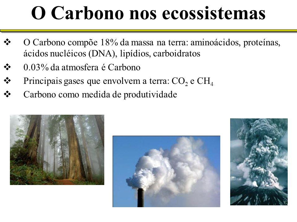 O Carbono nos ecossistemas