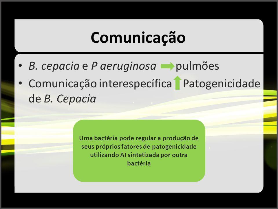 Comunicação B. cepacia e P aeruginosa pulmões