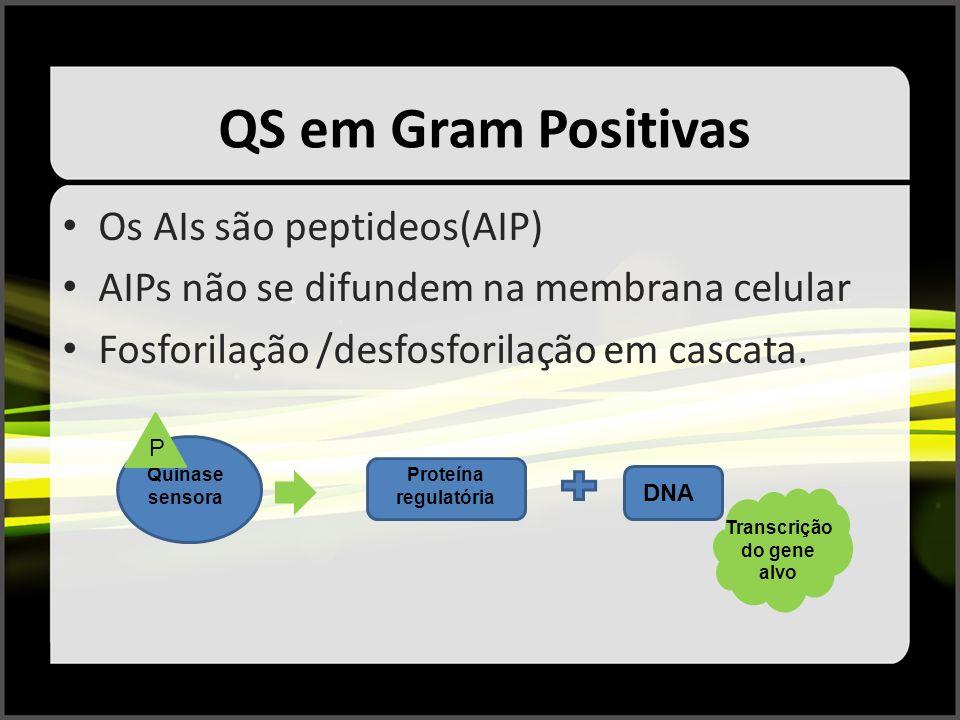 Transcrição do gene alvo