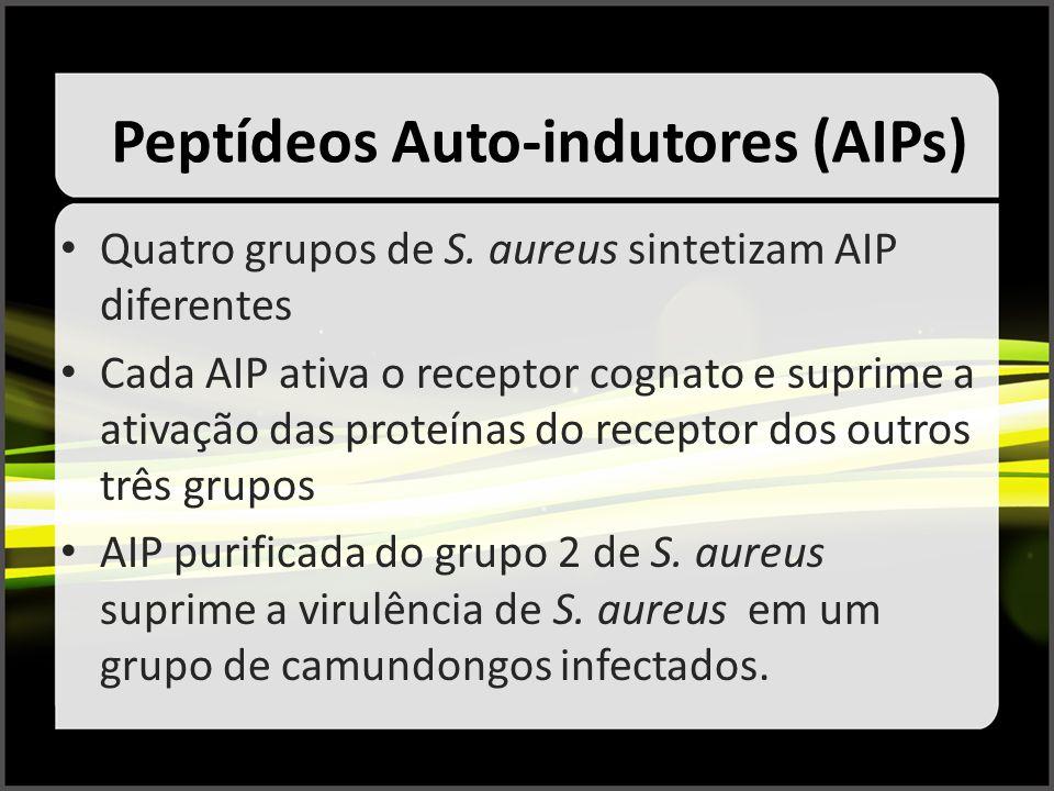Peptídeos Auto-indutores (AIPs)