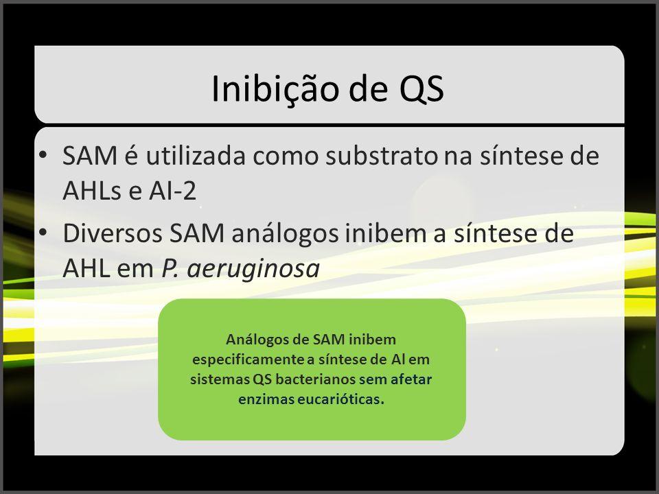Inibição de QS SAM é utilizada como substrato na síntese de AHLs e AI-2. Diversos SAM análogos inibem a síntese de AHL em P. aeruginosa.