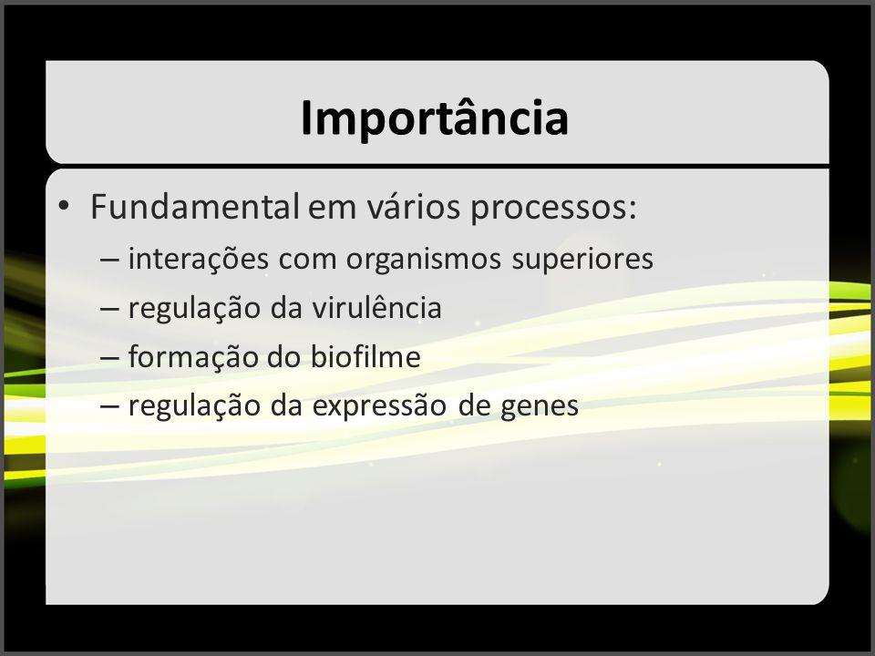 Importância Fundamental em vários processos: