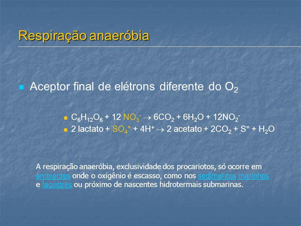 Respiração anaeróbia Aceptor final de elétrons diferente do O2