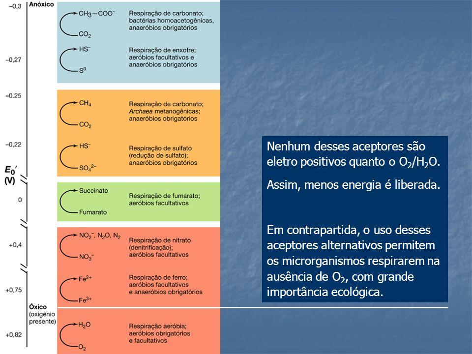 Nenhum desses aceptores são eletro positivos quanto o O2/H2O.