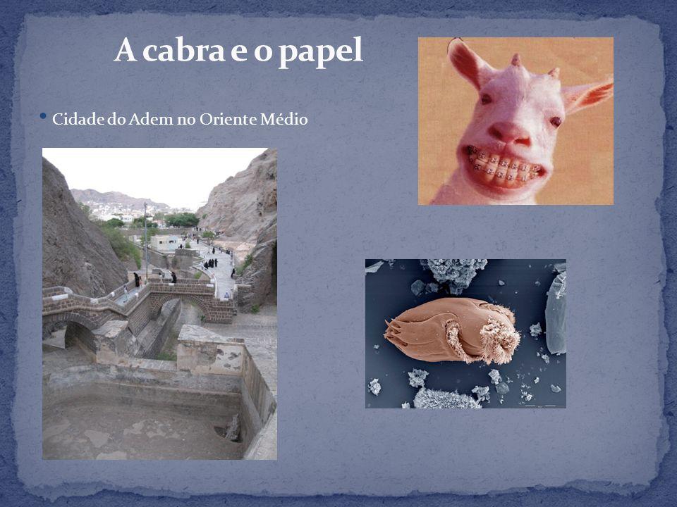 A cabra e o papel Cidade do Adem no Oriente Médio