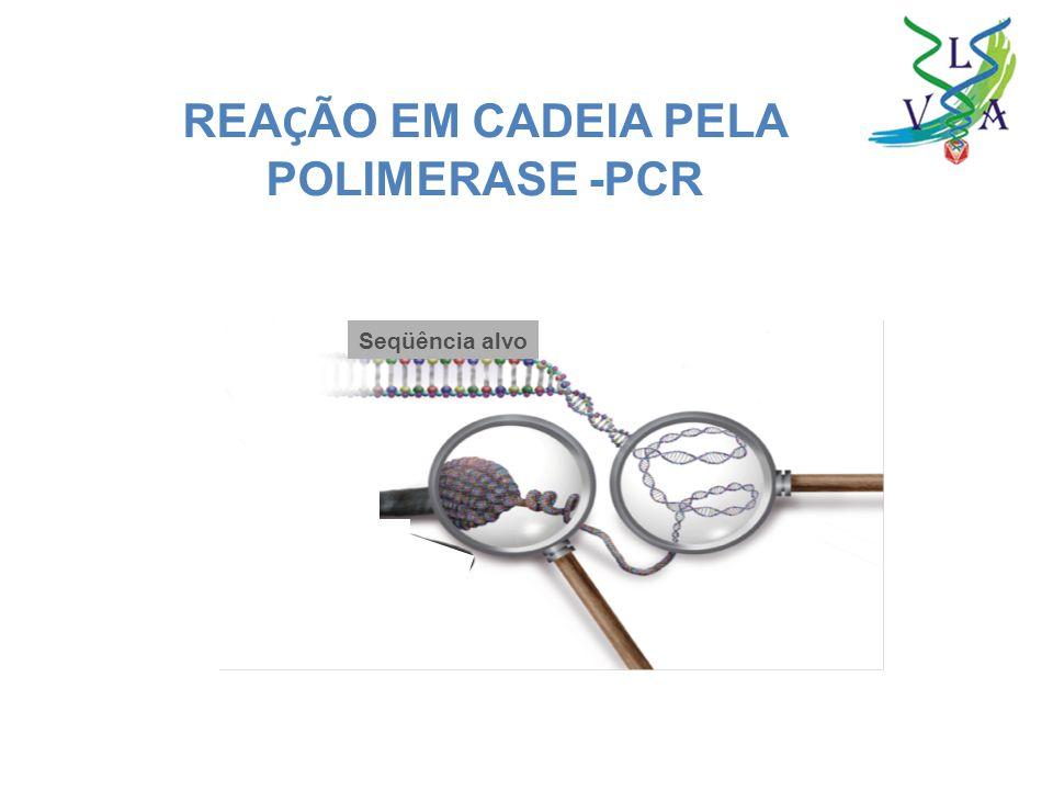 REAÇÃO EM CADEIA PELA POLIMERASE -PCR