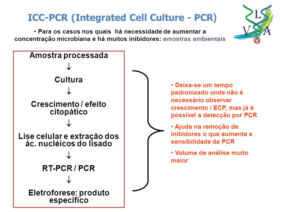 ICC-PCR (Integrated Cell Culture - PCR)