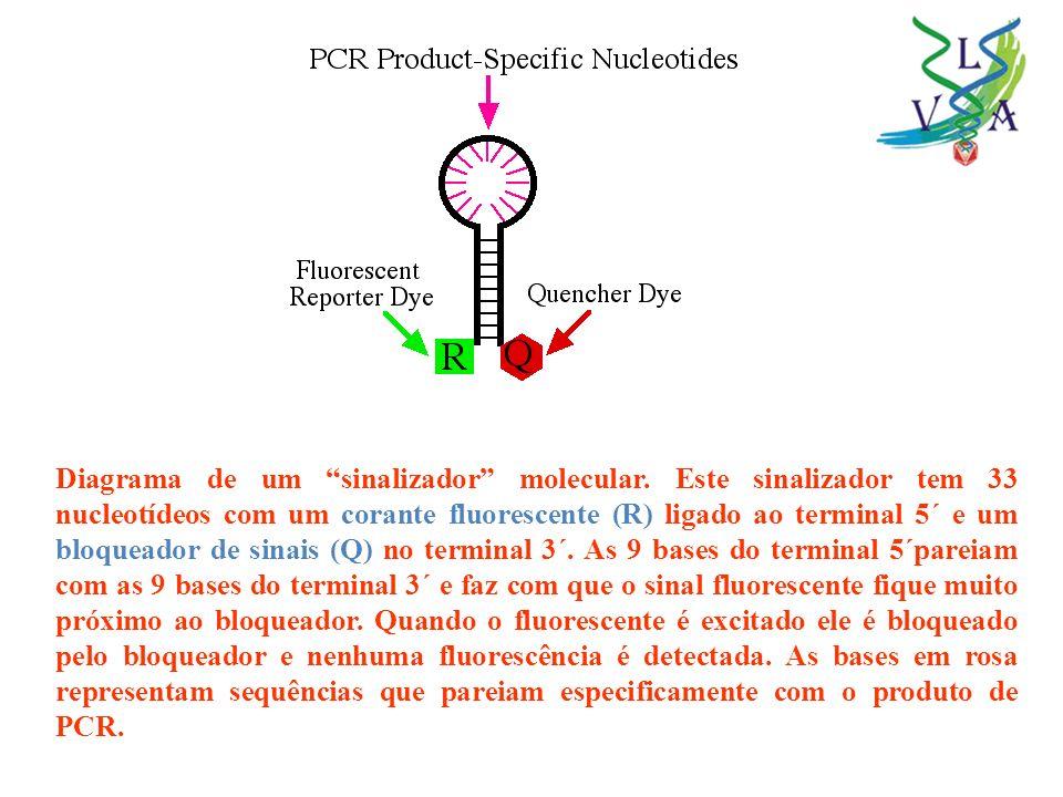 Diagrama de um sinalizador molecular