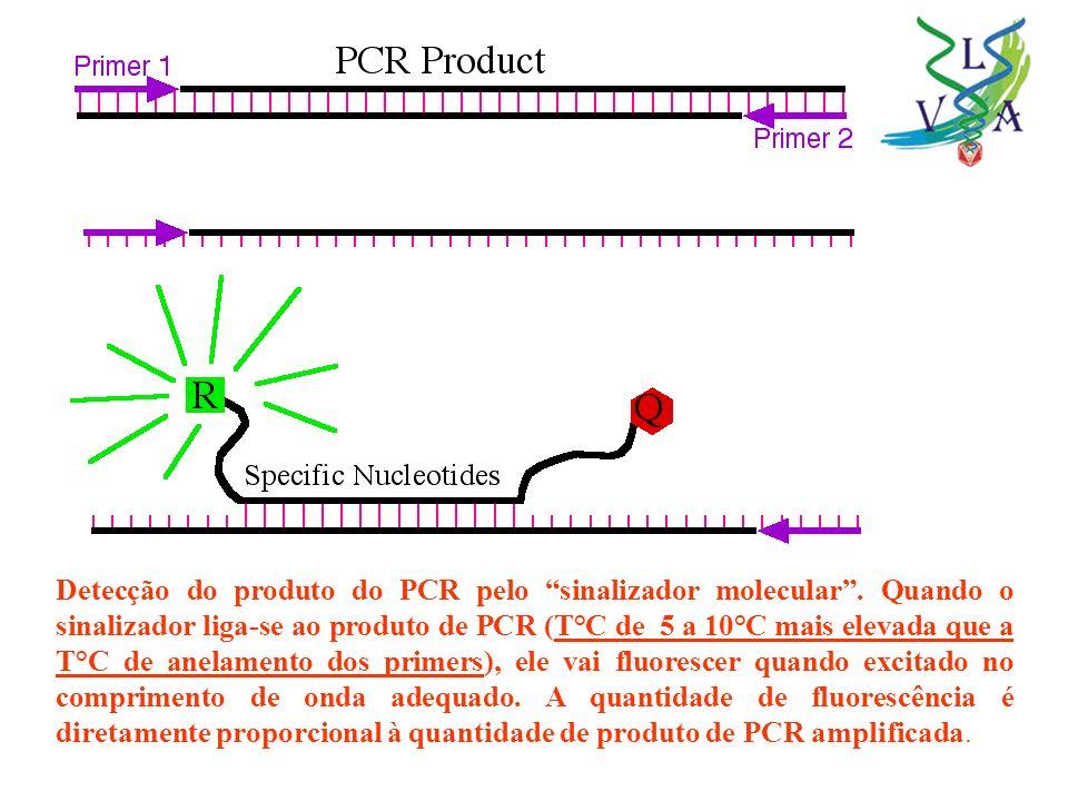 Detecção do produto do PCR pelo sinalizador molecular