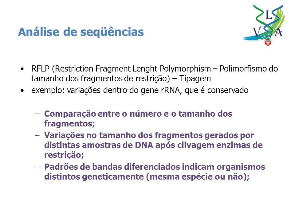 Análise de seqüências RFLP (Restriction Fragment Lenght Polymorphism – Polimorfismo do tamanho dos fragmentos de restrição) – Tipagem.