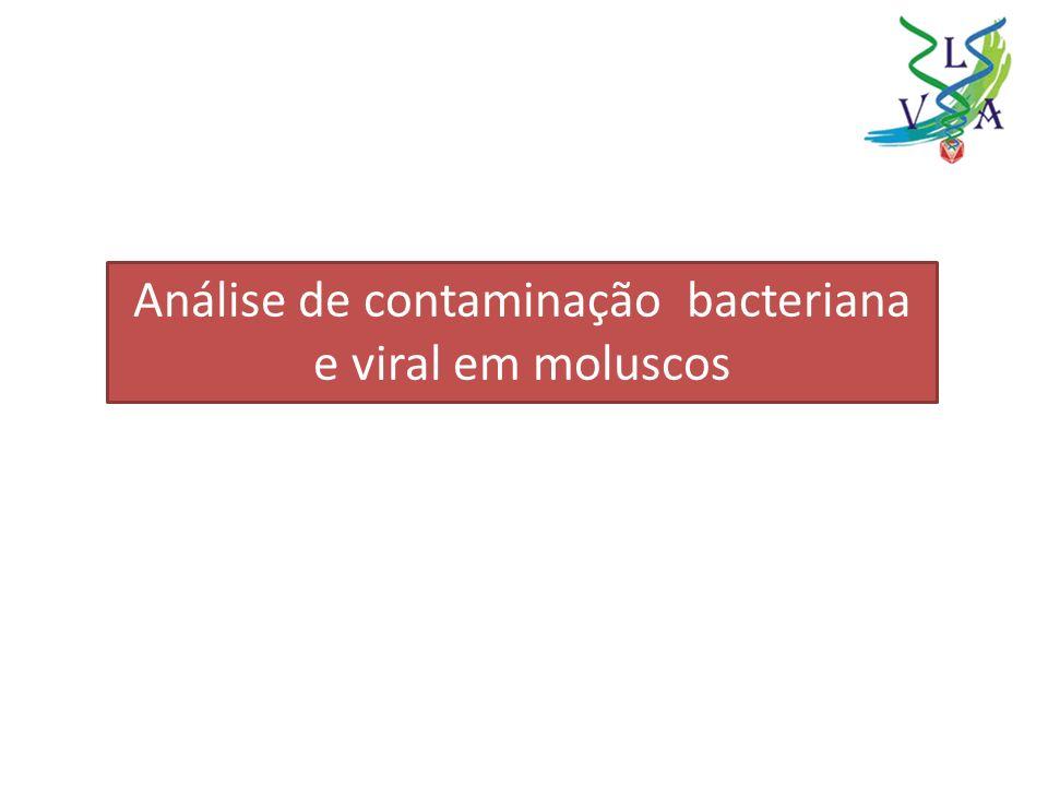 Análise de contaminação bacteriana e viral em moluscos
