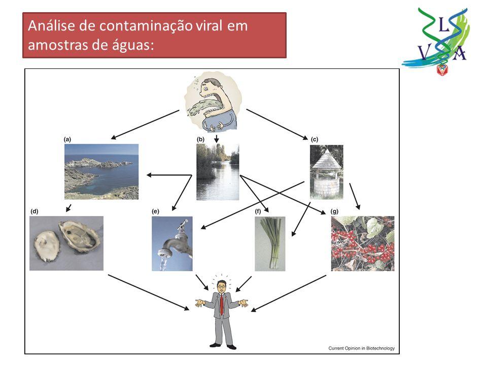 Análise de contaminação viral em amostras de águas: