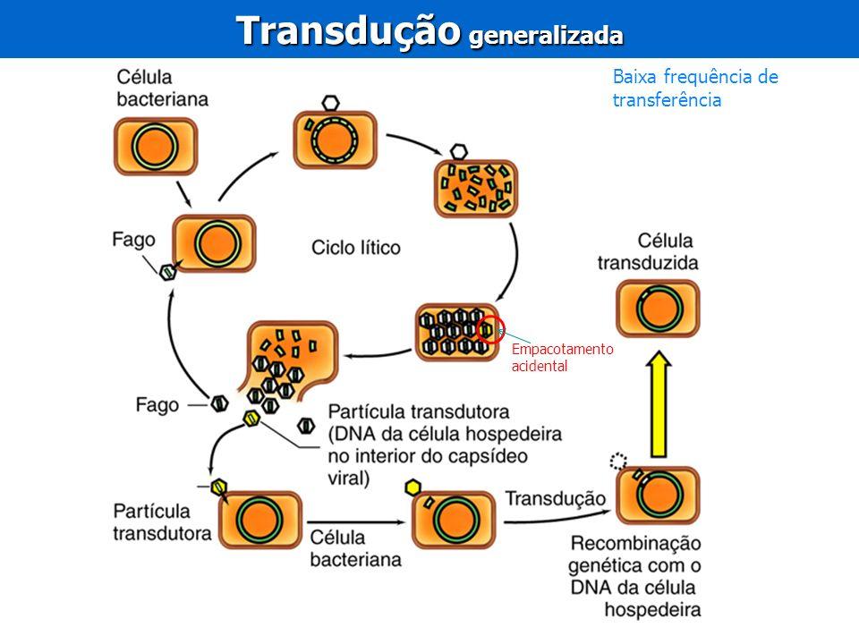 Transdução generalizada