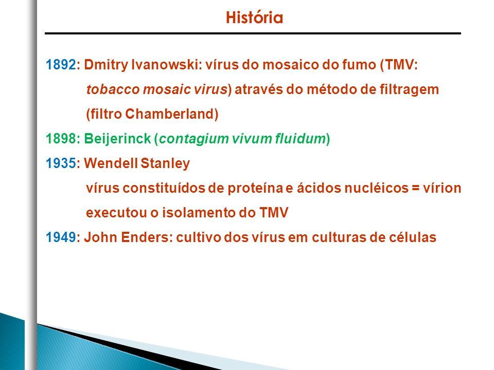 História 1892: Dmitry Ivanowski: vírus do mosaico do fumo (TMV: tobacco mosaic virus) através do método de filtragem (filtro Chamberland)