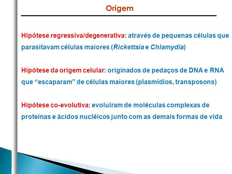 Origem Hipótese regressiva/degenerativa: através de pequenas células que parasitavam células maiores (Rickettsia e Chlamydia)