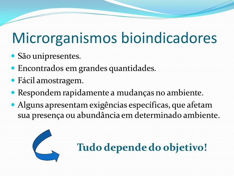 Microrganismos bioindicadores