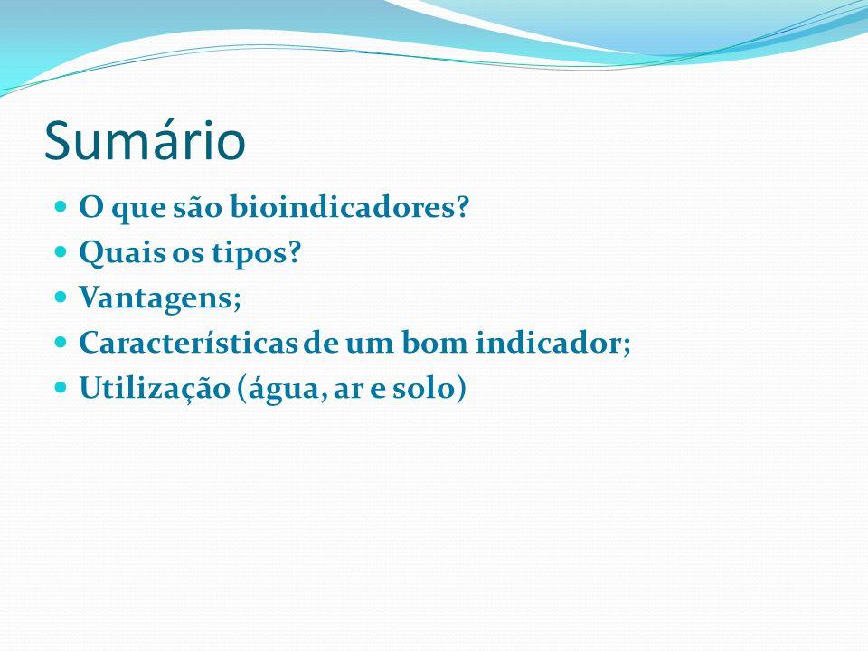 Sumário O que são bioindicadores Quais os tipos Vantagens;