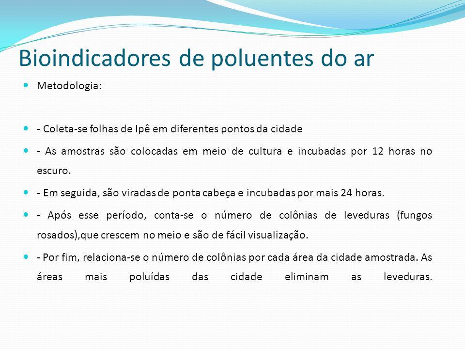 Bioindicadores de poluentes do ar