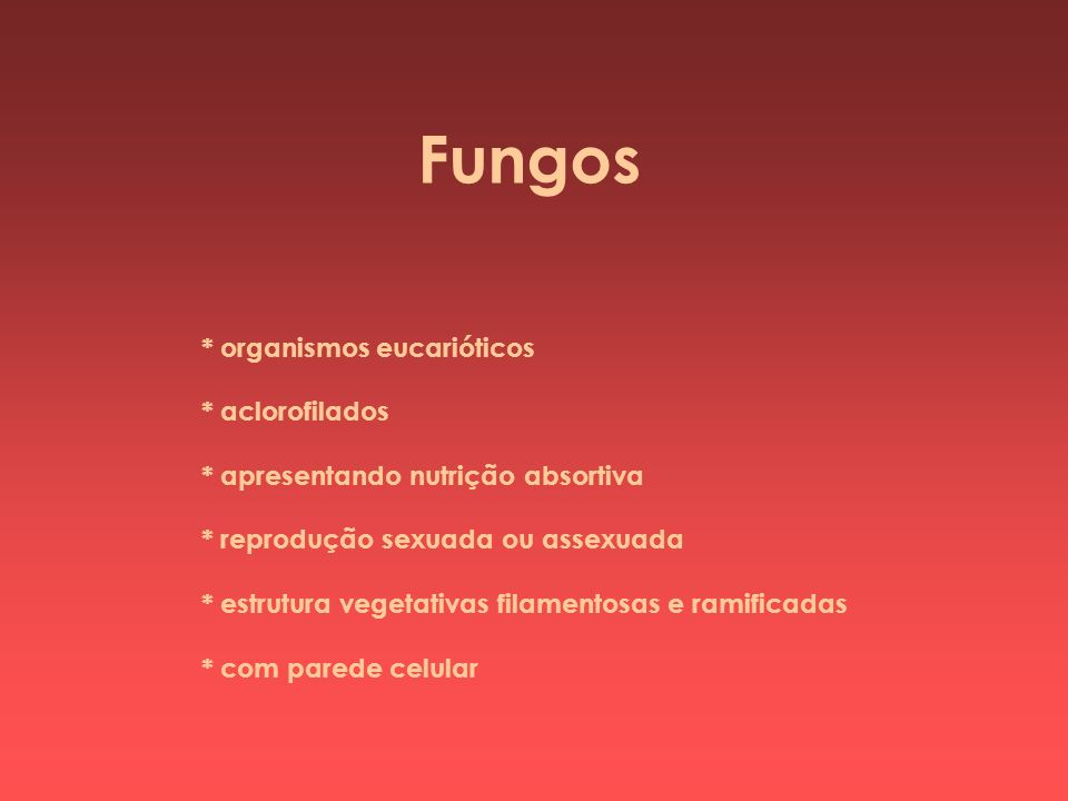 Fungos * organismos eucarióticos * aclorofilados