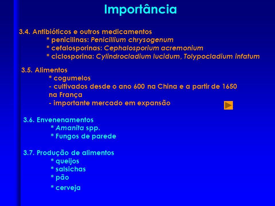Importância * cerveja 3.4. Antibióticos e outros medicamentos