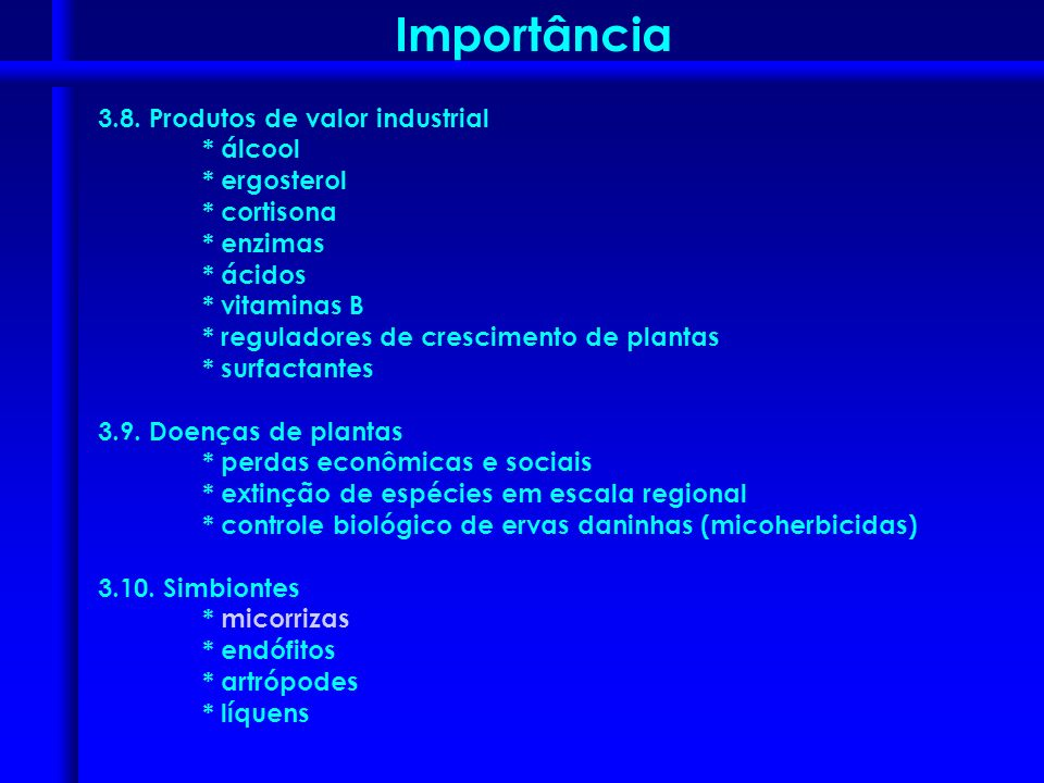 Importância 3.8. Produtos de valor industrial * álcool * ergosterol