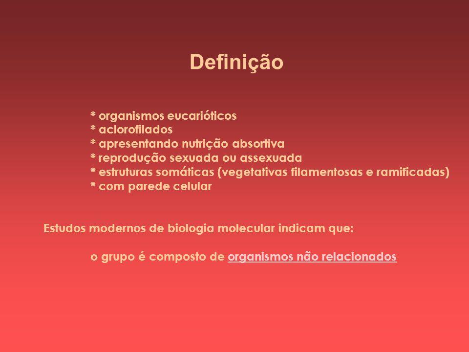 Definição * organismos eucarióticos * aclorofilados