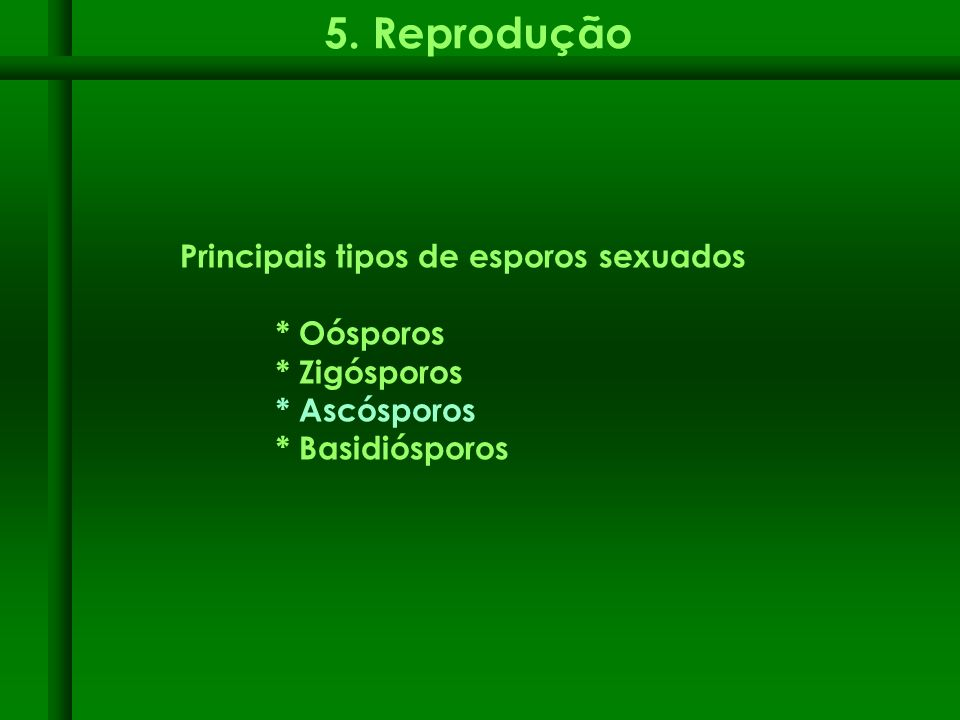 5. Reprodução Principais tipos de esporos sexuados * Oósporos