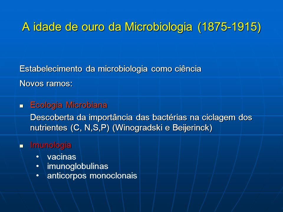 Desenvolvimento de técnicas para estudos dos microrganismos