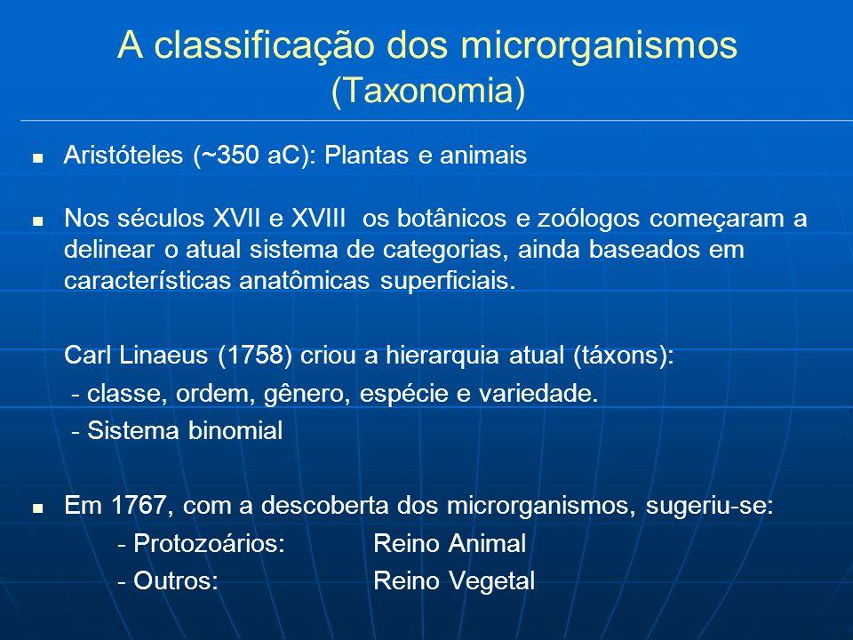 O futuro da microbiologia