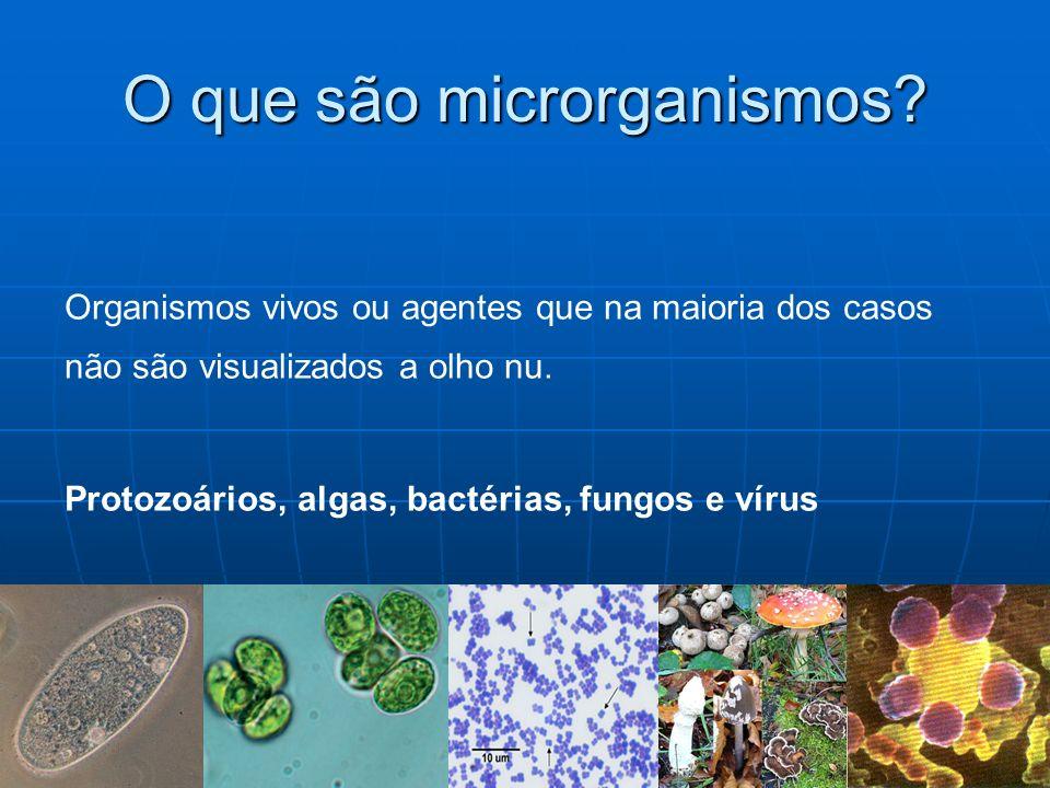 Definição: mikros + bios + logos - Primeiros microrganismos 3,5 - 3,8 bilhões de anos