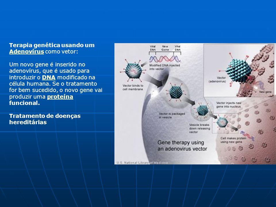 Porquê estudar Microbiologia