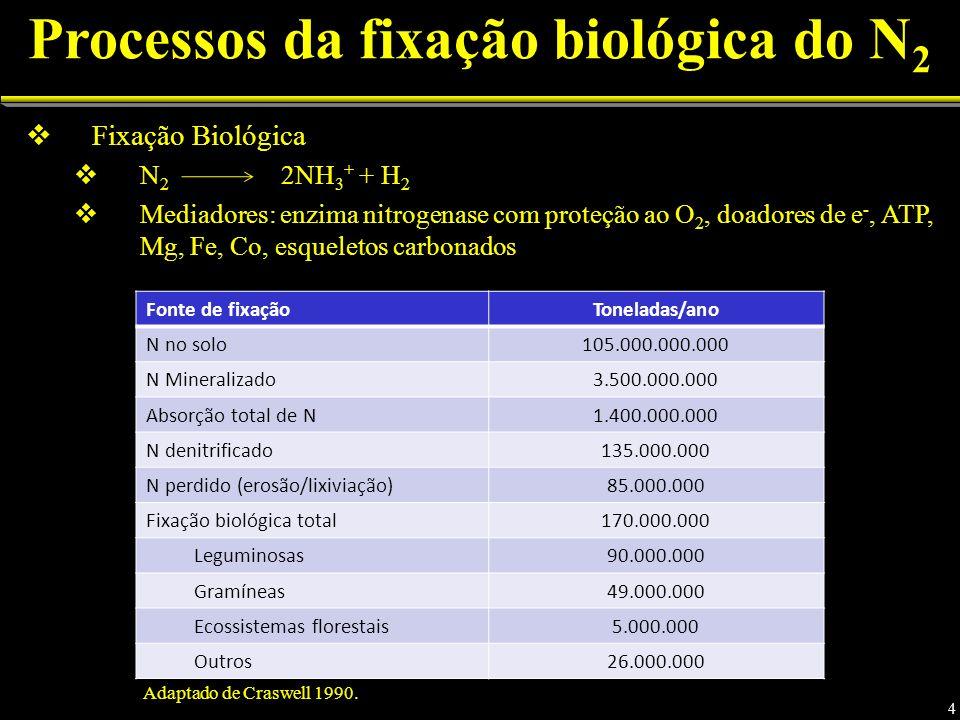 Processos da fixação biológica do N2