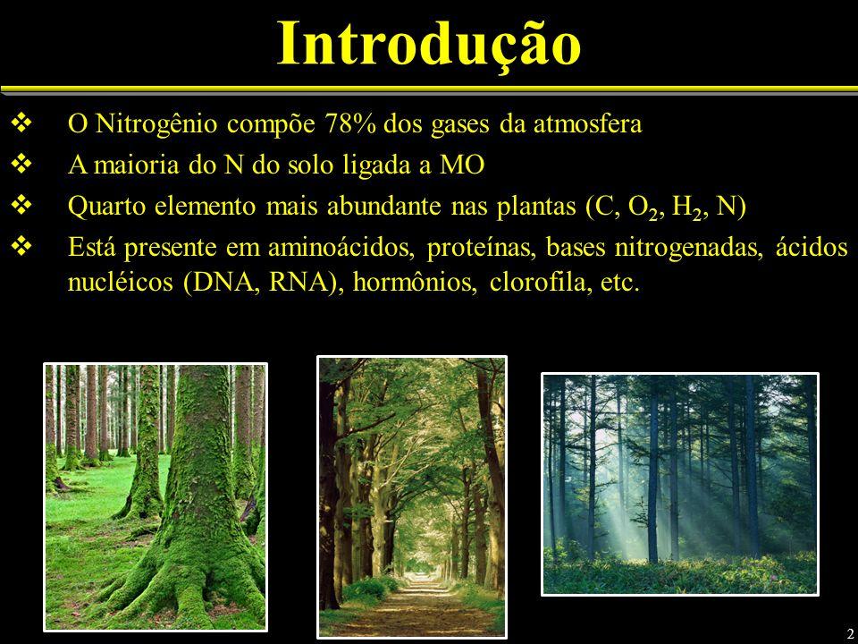 Introdução O Nitrogênio compõe 78% dos gases da atmosfera