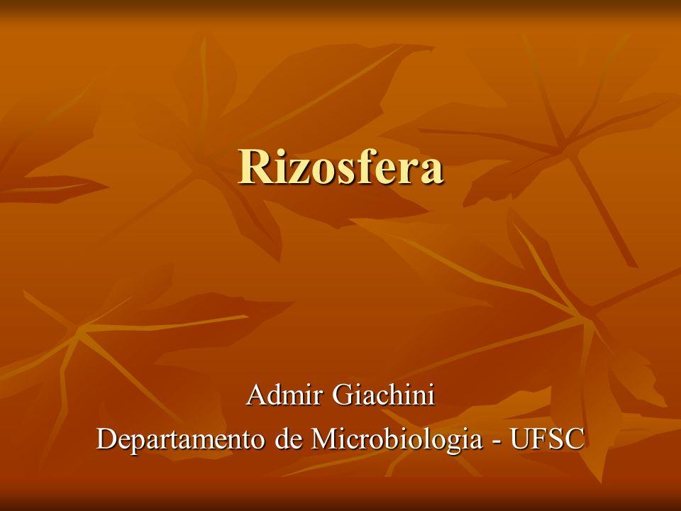 Admir Giachini Departamento de Microbiologia - UFSC