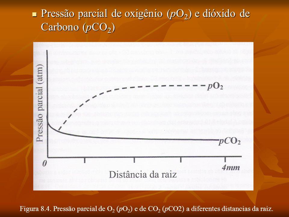 Pressão parcial de oxigênio (pO2) e dióxido de Carbono (pCO2)
