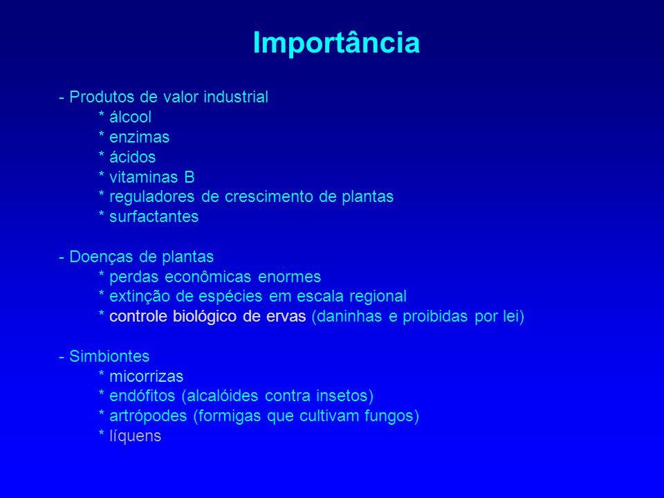 Importância - Produtos de valor industrial * álcool * enzimas * ácidos