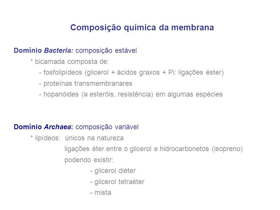 Composição química da membrana