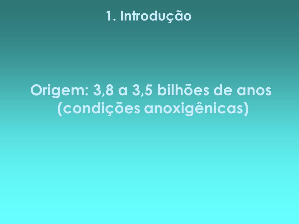 Origem: 3,8 a 3,5 bilhões de anos (condições anoxigênicas)