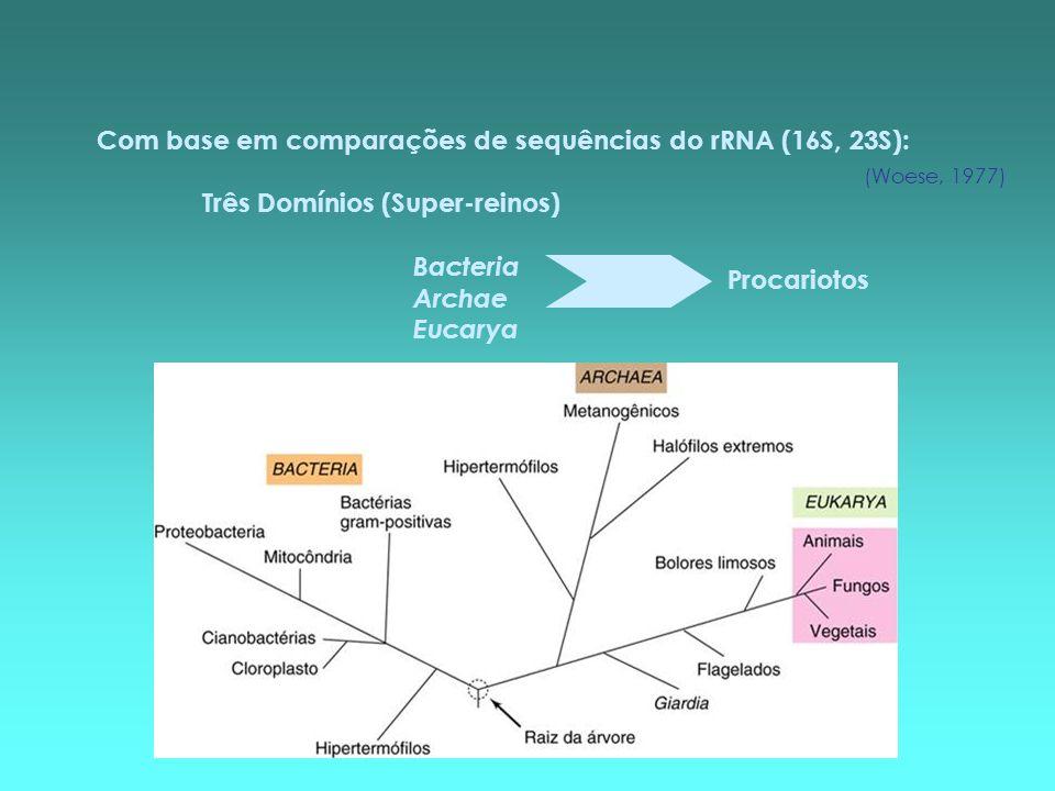 Com base em comparações de sequências do rRNA (16S, 23S):