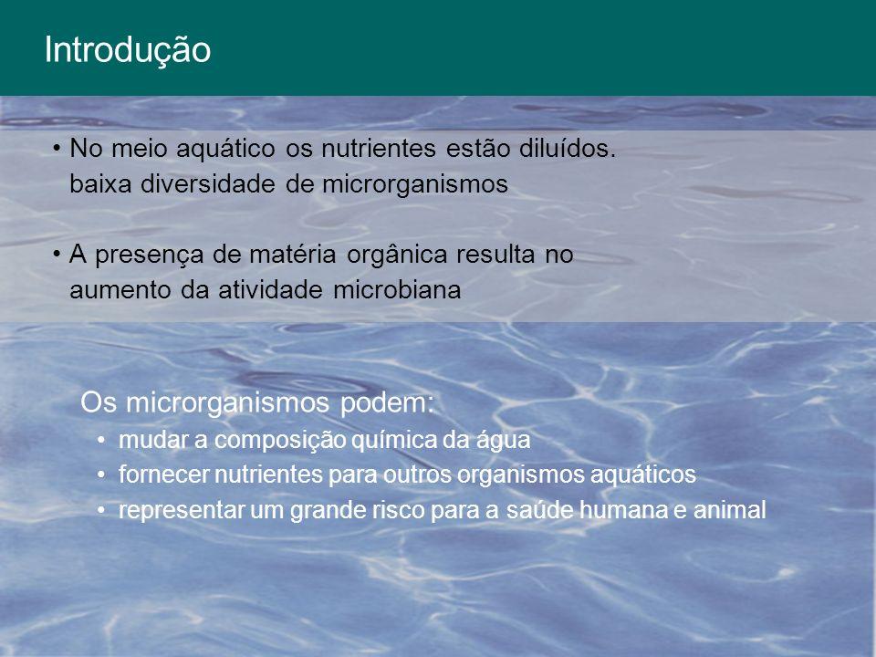 Introdução Os microrganismos podem:
