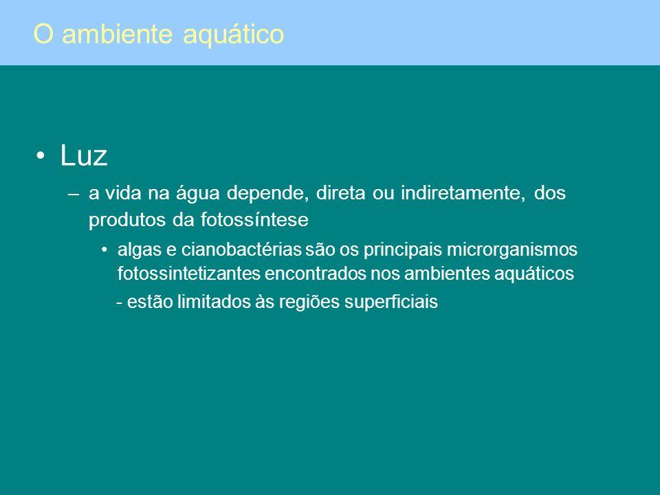 Luz O ambiente aquático