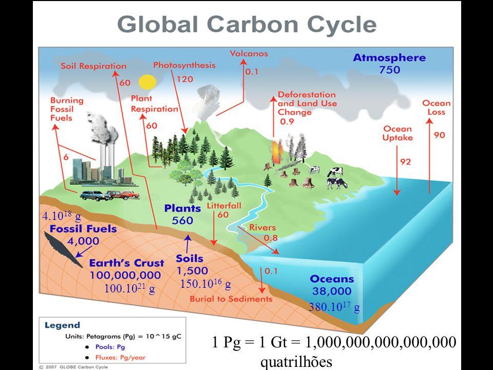 1 Pg = 1 Gt = 1,000,000,000,000,000 g quatrilhões 4.1018 g 150.1016 g