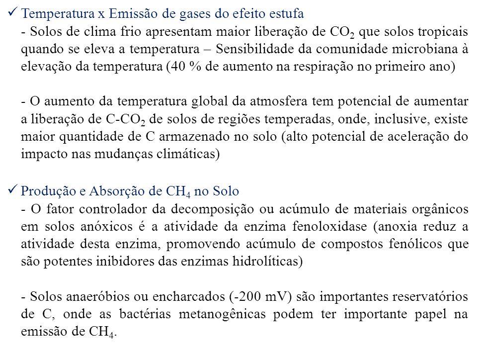 Temperatura x Emissão de gases do efeito estufa