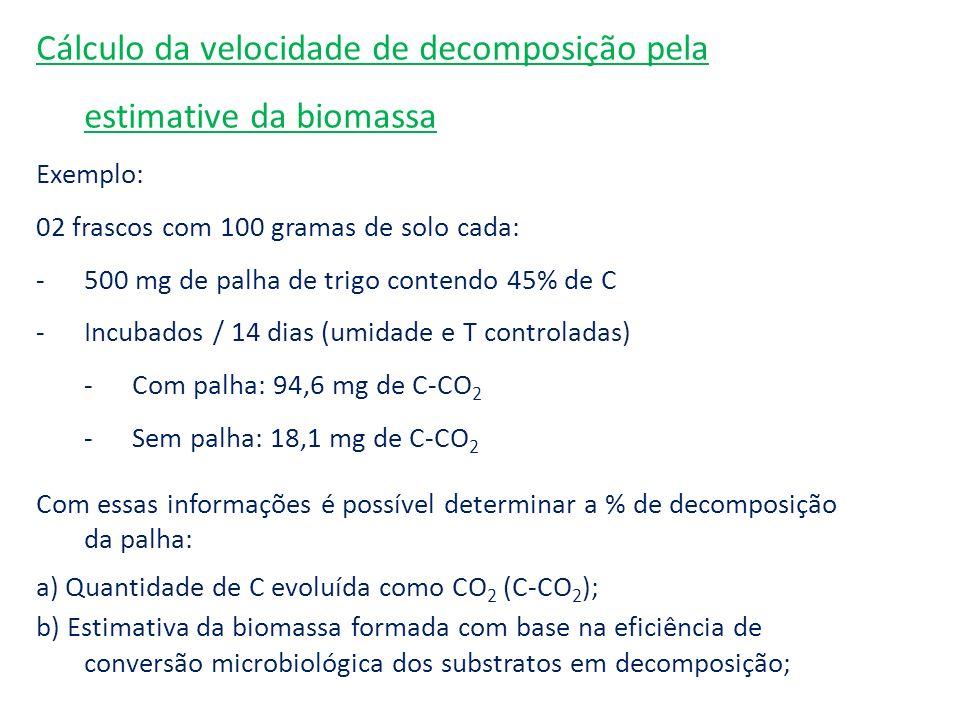 Cálculo da velocidade de decomposição pela estimative da biomassa