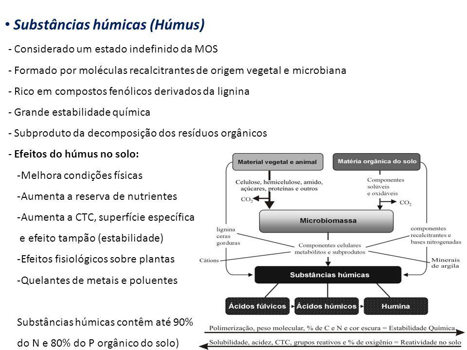 Substâncias húmicas (Húmus)